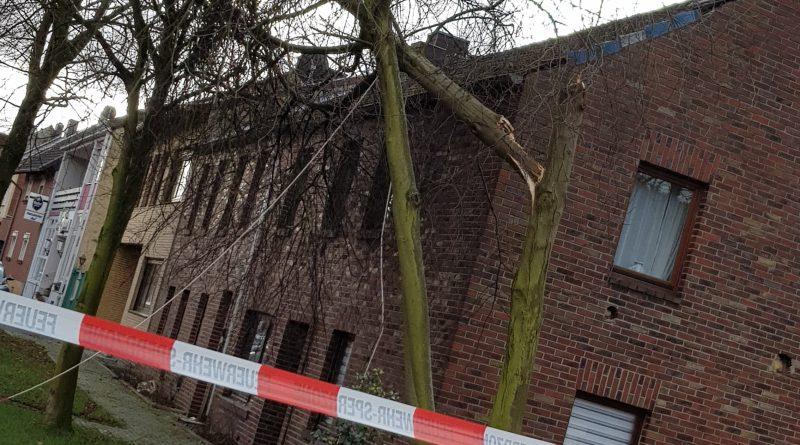 Hambach #TH# Baum gegen Haus